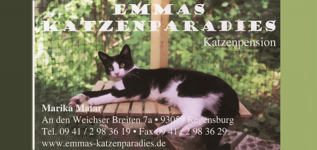 Banner Katzenparadies April 2020