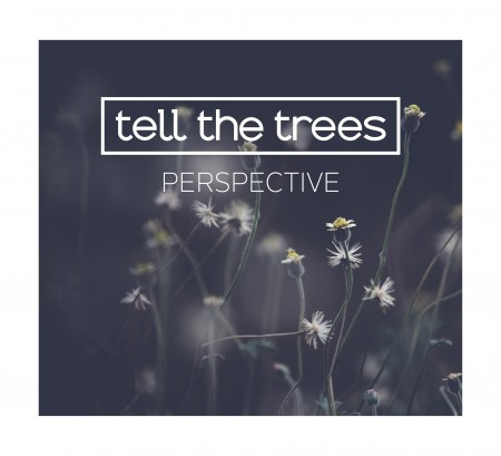 CD-Kritik | Tell The Trees – Perspective
